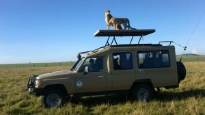 kenya_safari_landcruiser